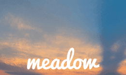 Meadow - Stylish WordPress Theme