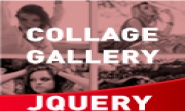 Collage Photo Gallery YouTube & Vimeo