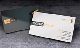 Creative unique business card-saViju